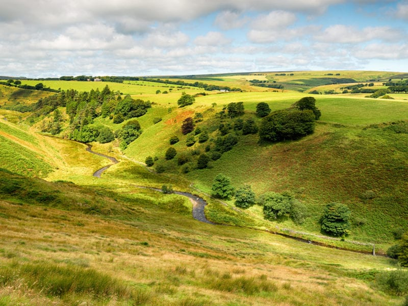 a picture of rolling hill countryside with a road travelling through it