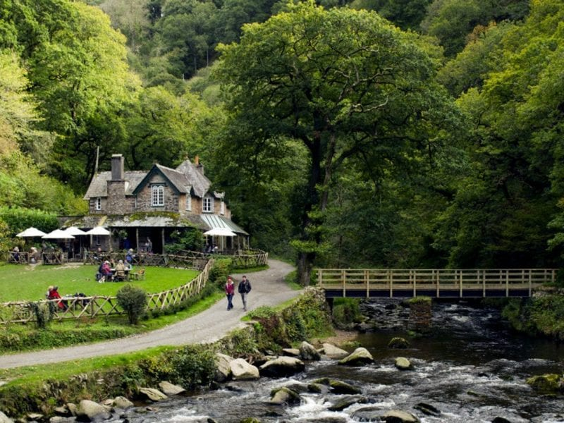a picture of Lynmouth, a cottage cafe surrounded by large green trees with a flowing rocky river under a bridge